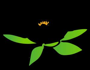 300x232 8660 Lotus Flower Outline Clip Art Free Public Domain Vectors