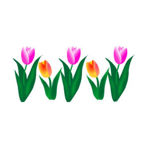 300x300 Top 76 Tulip Flower Clip Art