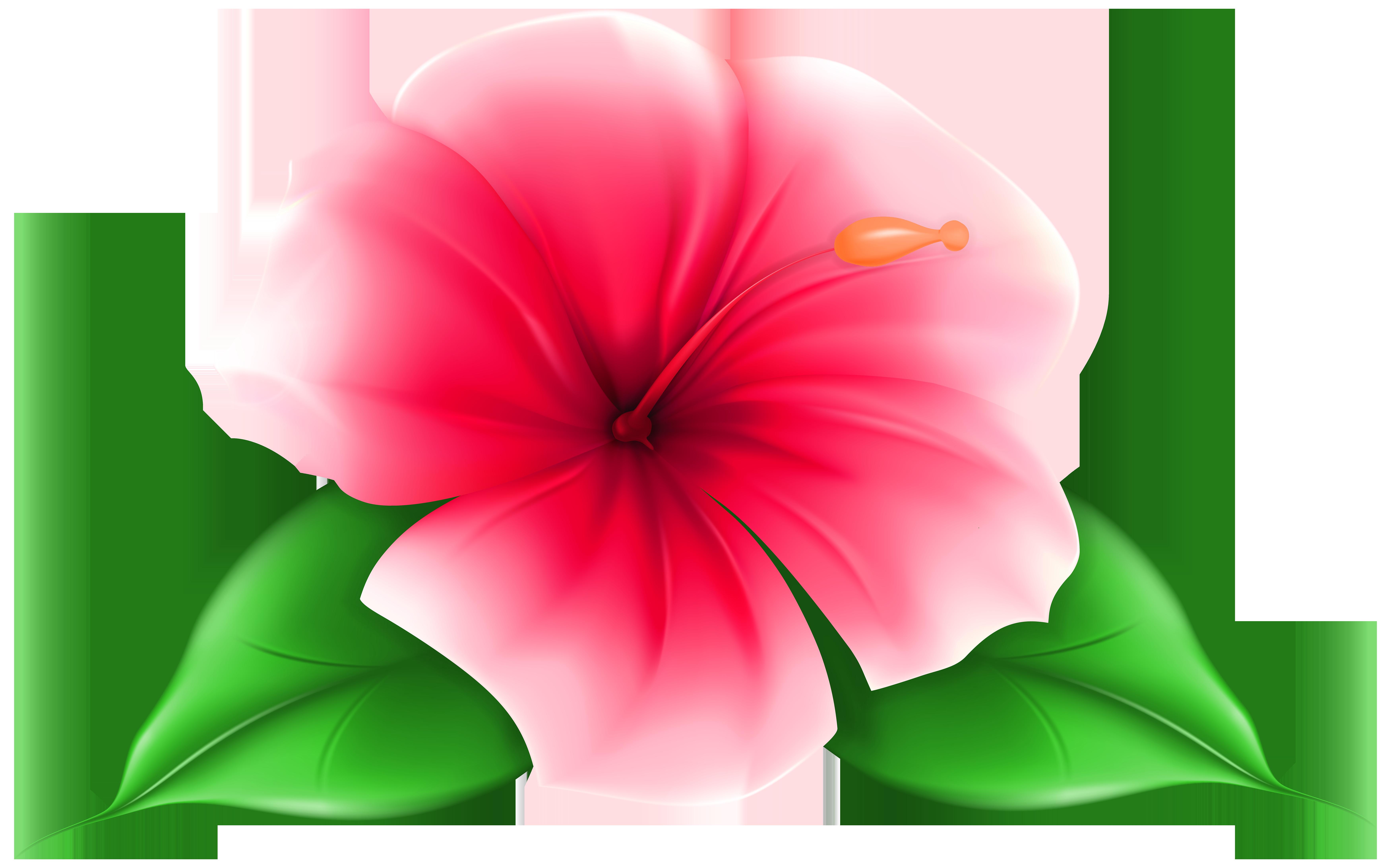 7000x4371 Exotic Flower Png Clip Art Imageu200b Gallery Yopriceville