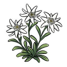 Flower Basket Colouring Pages At Getdrawings Com Free