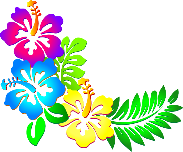 600x499 Flower Border Hibiscus Border Clipart Clipart Kid 2