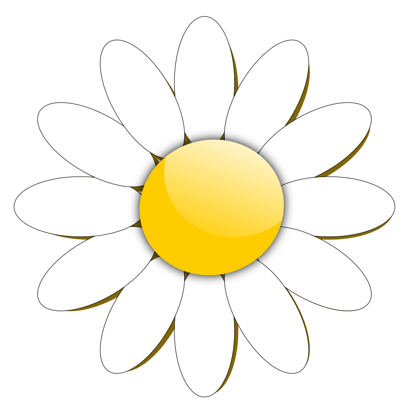 831x824 Unusual Cartoon Daisy Flower Free Images Download Clip Art