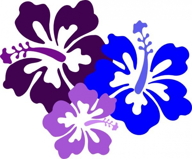 820x677 Best 25 Free Clip Art Flowers Ideas On Clipart Ofpng