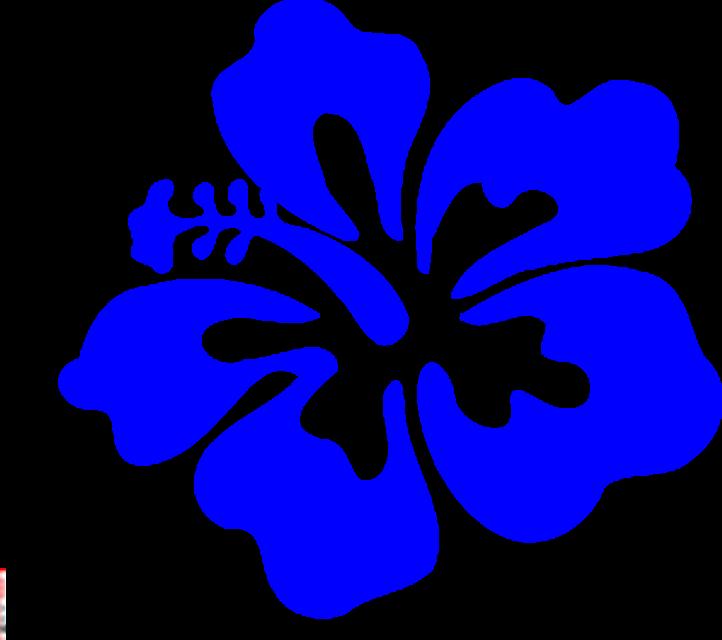 722x640 Hawaiian Flower Border Clipart