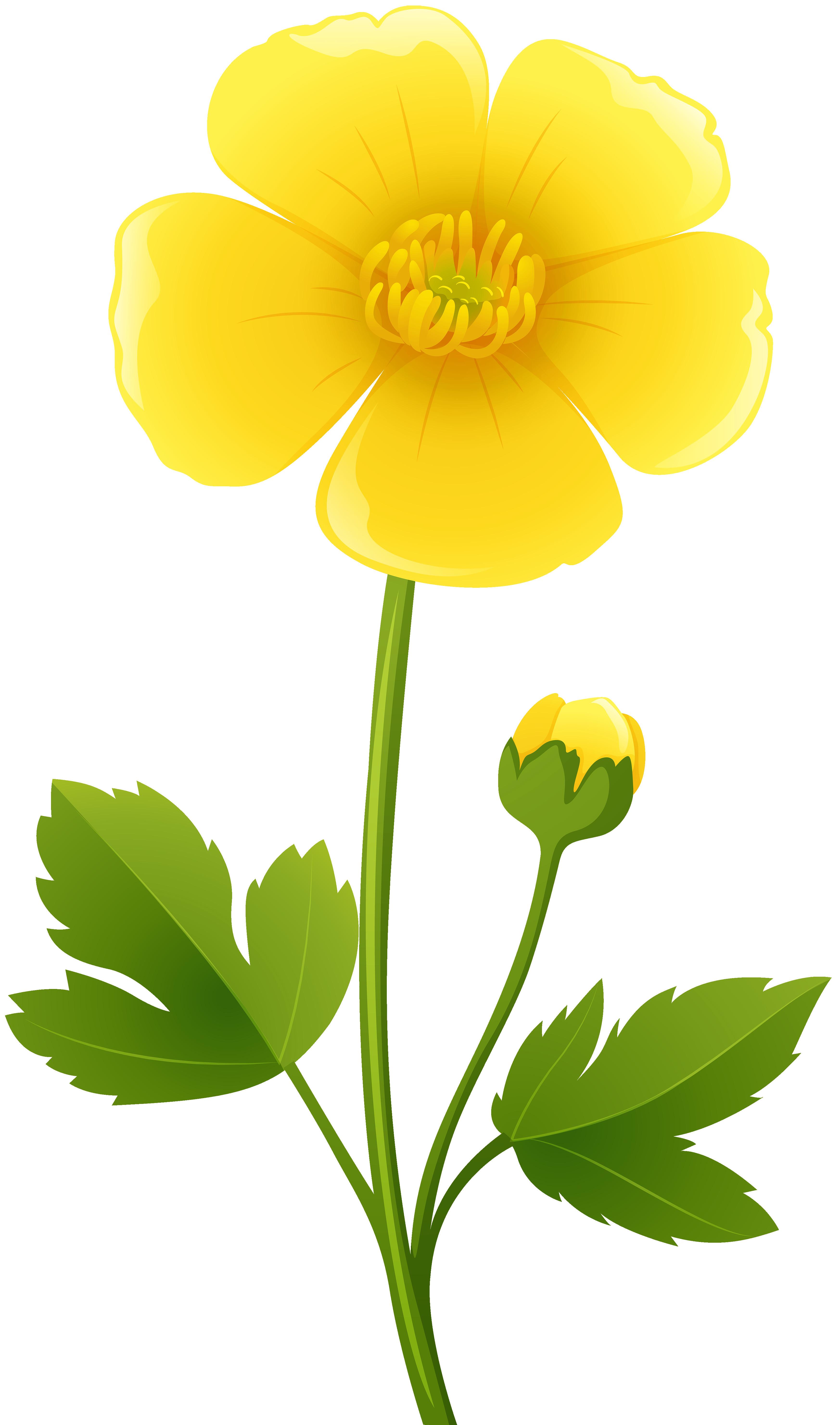3492x5925 Yellow And Gray Mod Flower Clip Art Set Printable Digital