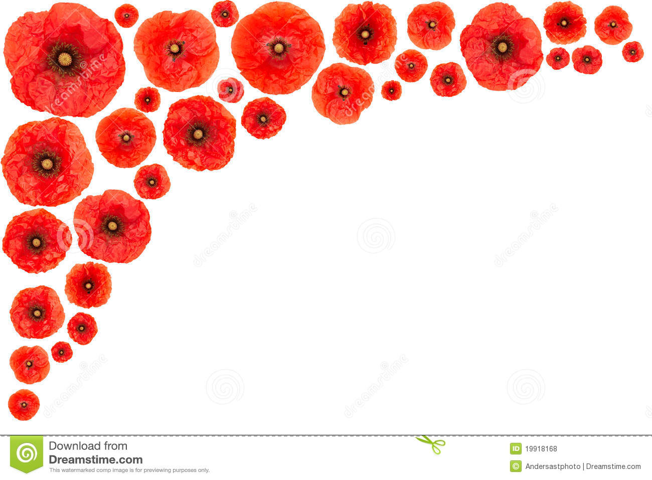 The Best Free Poppy Clipart Images Download From 50 Free Cliparts