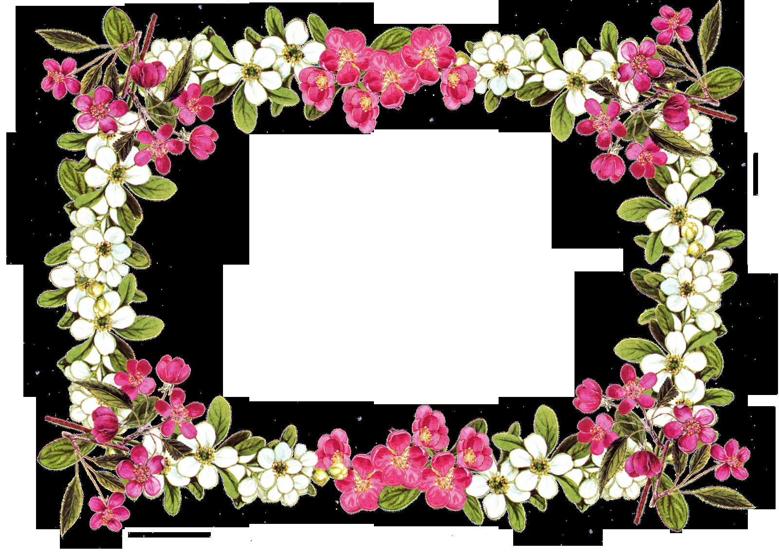 1600x1143 Best Of Flower Border Clipart Collection