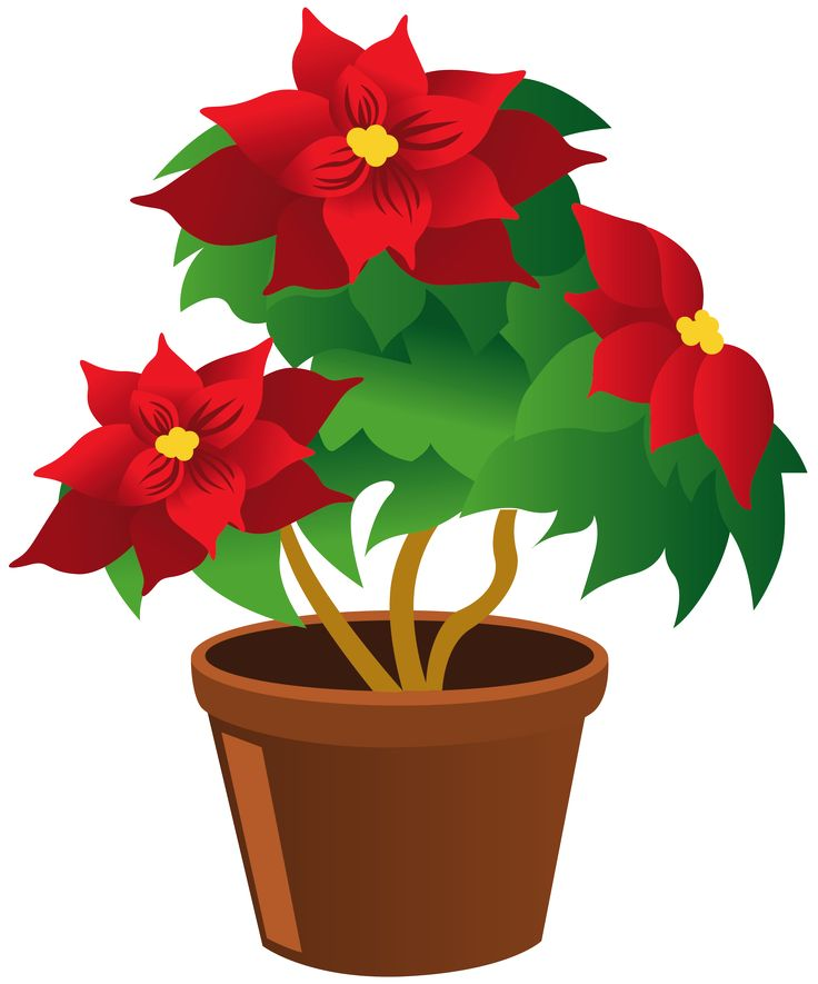 Flower In A Pot Clipart