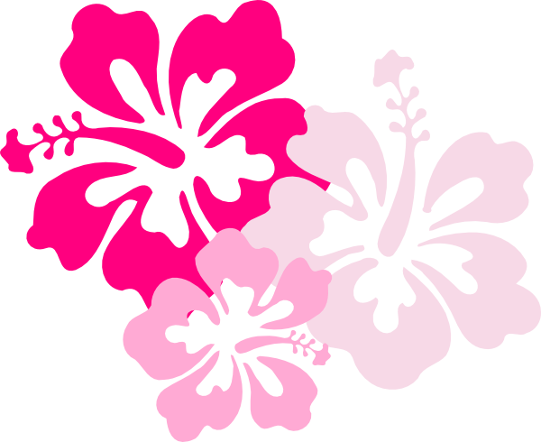 600x490 Hawaiian Flowers Clipart No Background