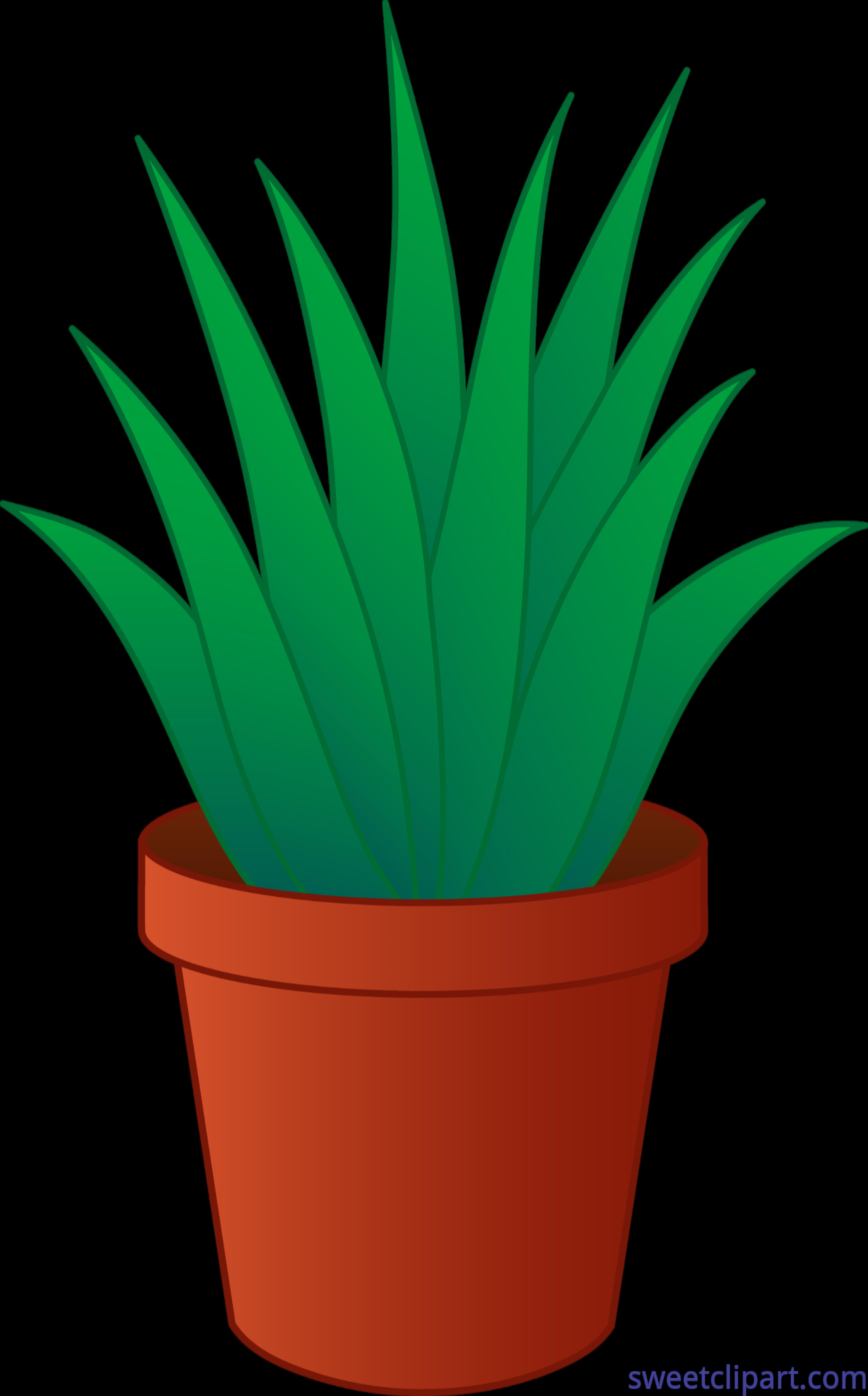 4752x7640 Aloe Vera Plant Pot Clip Art