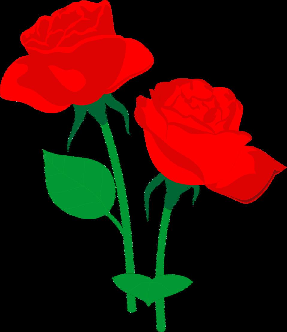 958x1106 Flower Rose Clip Art