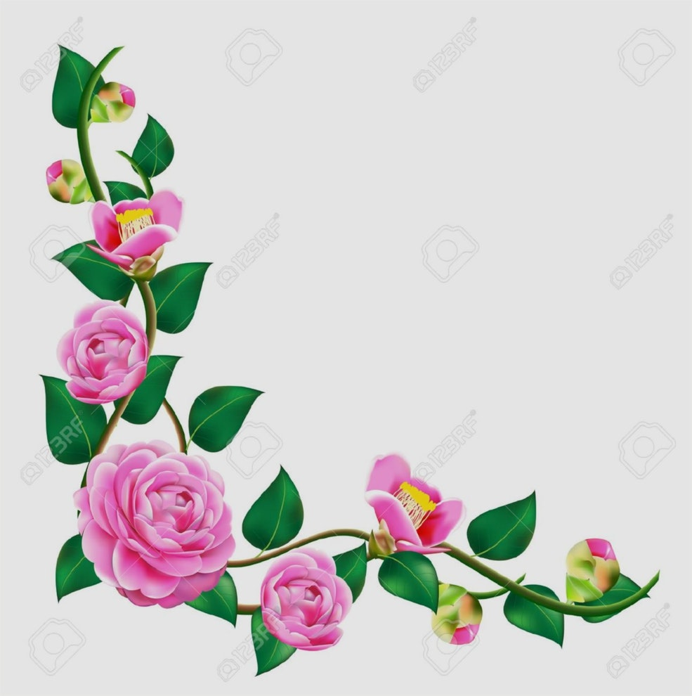 Flower Vine Clipart At Getdrawings Free For Personal Use