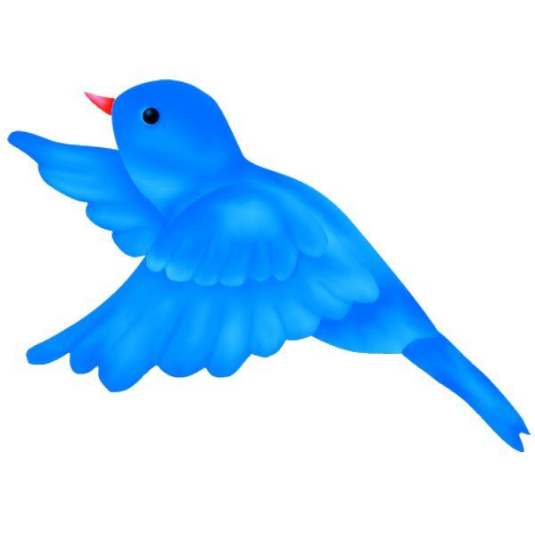 600x600 37 Best Pajaritos Images On Little Birds, Cartoon