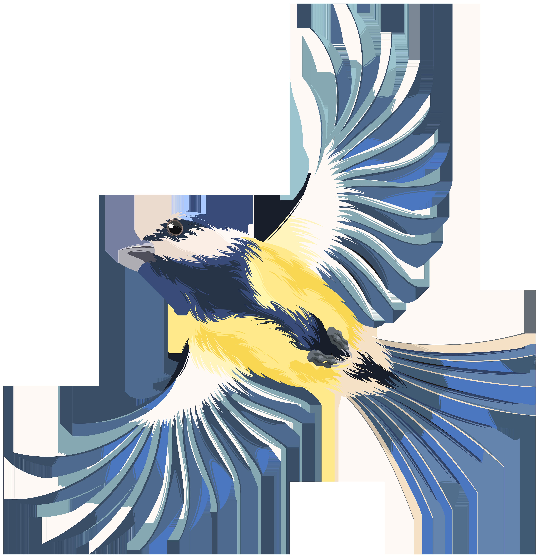 5787x6000 Flying Bird Transparent Png Clip Art Imageu200b Gallery Yopriceville