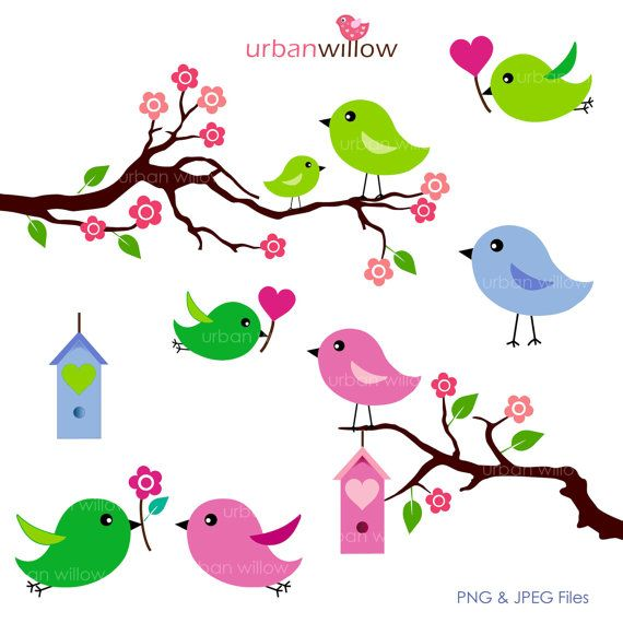 570x570 Love Birds Apple Green 6 Piece Clip Art Set For By Urbanwillow