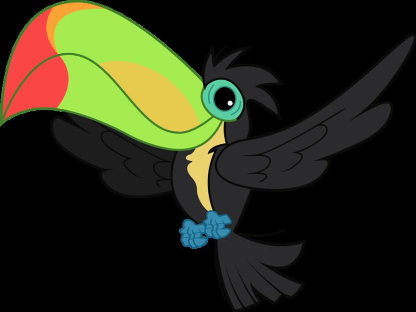 830x622 Toucan Bird Drawing Clip Art