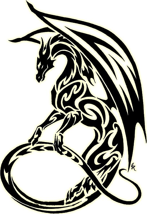 514x750 The 46 Best Drawing Of Tribal Flying Dragon Tattoo Images
