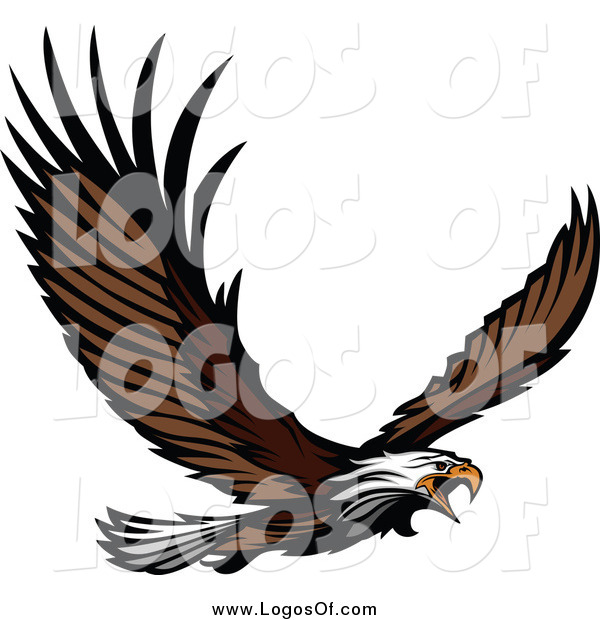 600x620 Vector Clipart Of A Bald Eagle Flying Logo By Chromaco