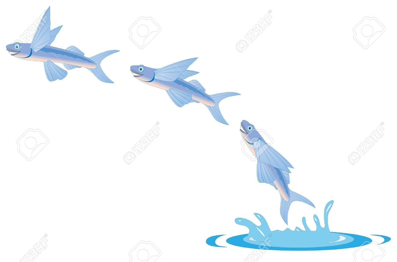 1300x858 Cartoon Illustration Of A Flying Fish Royalty Free Cliparts