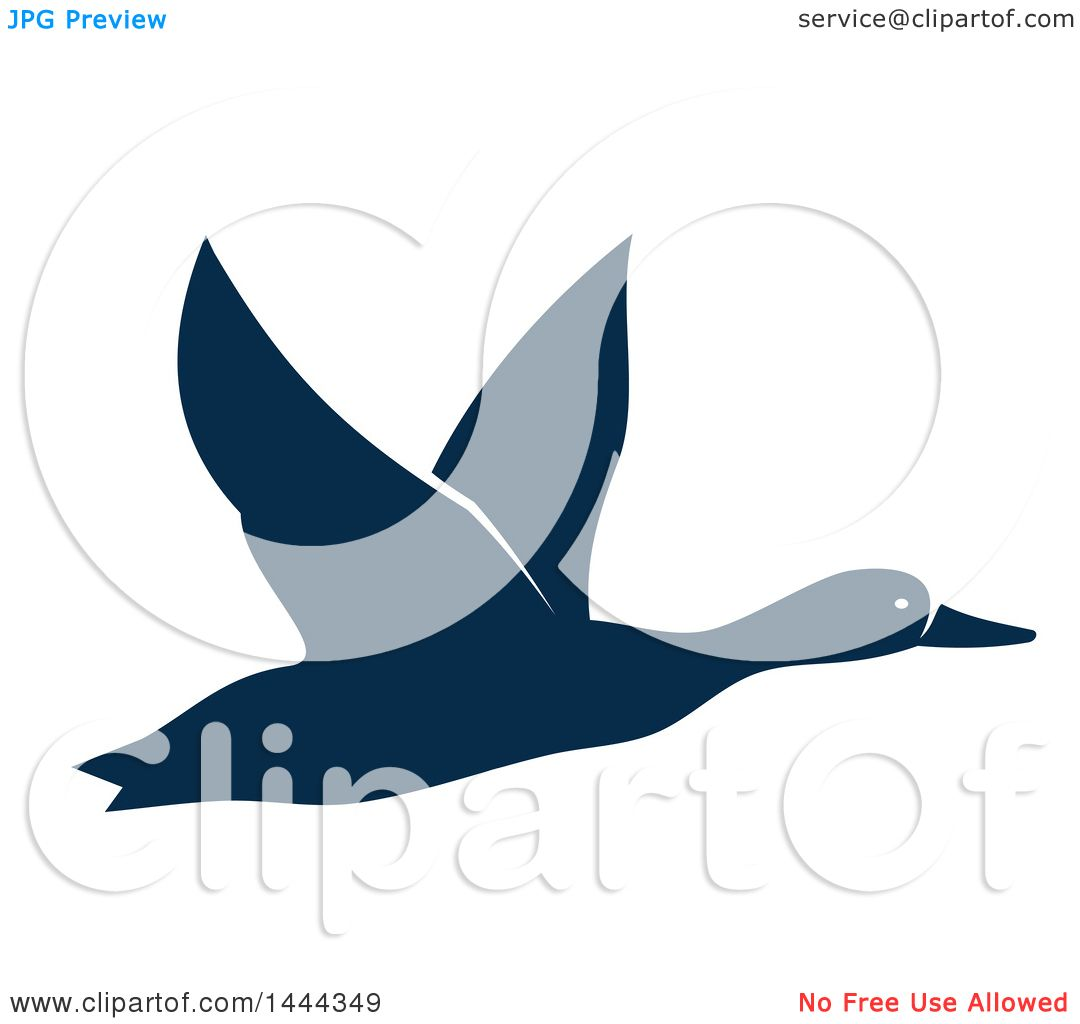 1080x1024 Clipart Of A Navy Blue Flying Duck Or Goose With A White Outline