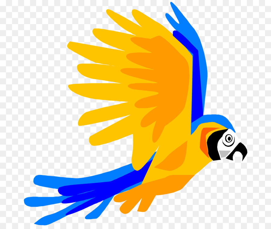 900x760 Parrot Bird Flight Macaw Clip Art