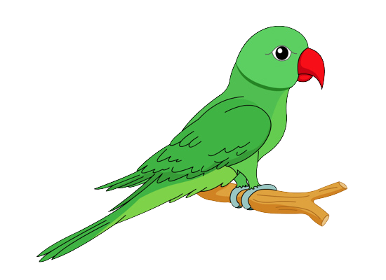 550x400 Parrot Clip Art