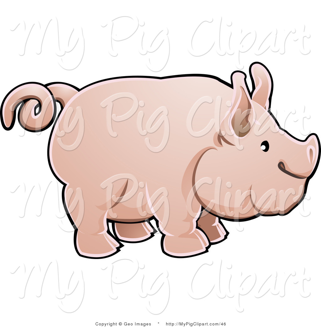1024x1044 Pig Tail Clipart Outline