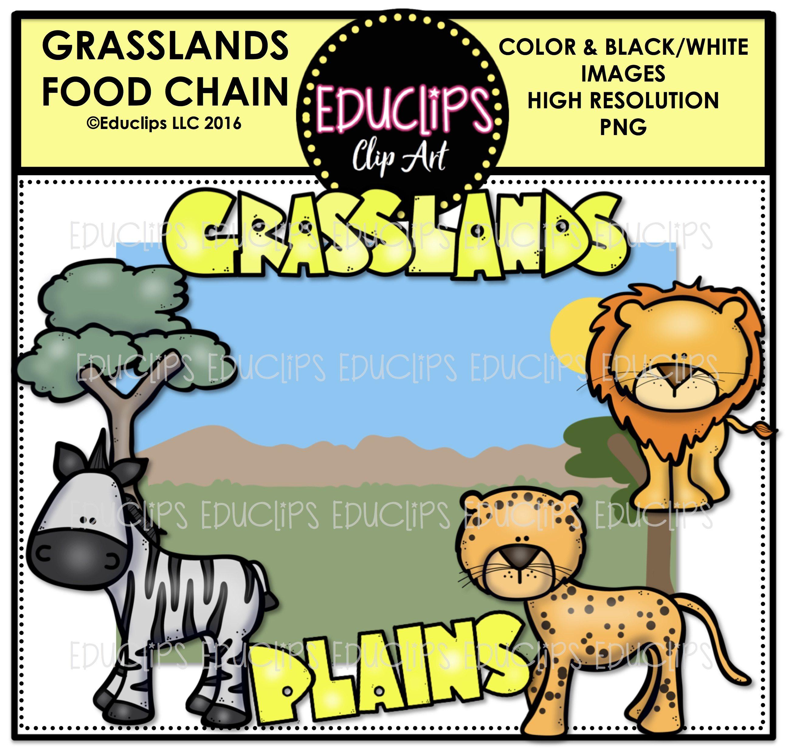 2592x2472 Food Chains Clip Art Mega Bundle (Color And Bampw)