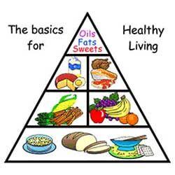 250x250 Top 92 Food Pyramid Clip Art