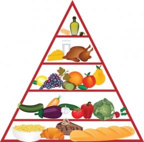 288x284 Food Program Cliparts