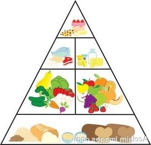 300x289 Chart Clipart Food Pyramid 3147687