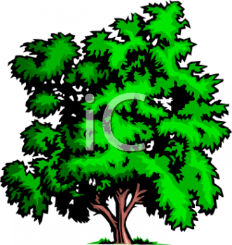 Forest Fire Clipart