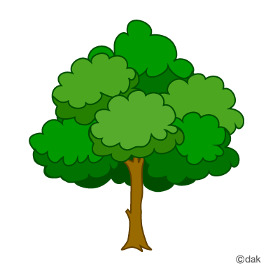 400x400 Group Of Three Trees Clipart