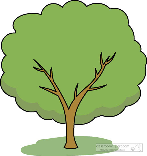 517x550 Tree With Leaves Clipart Amp Tree With Leaves Clip Art Images