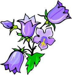 236x246 Forget Me Not Flower Clip Art
