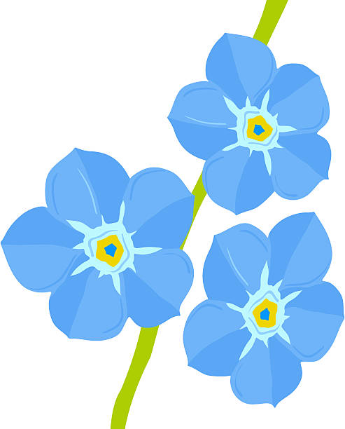 493x612 Collection Of Forget Me Not Clipart Free High Quality, Free