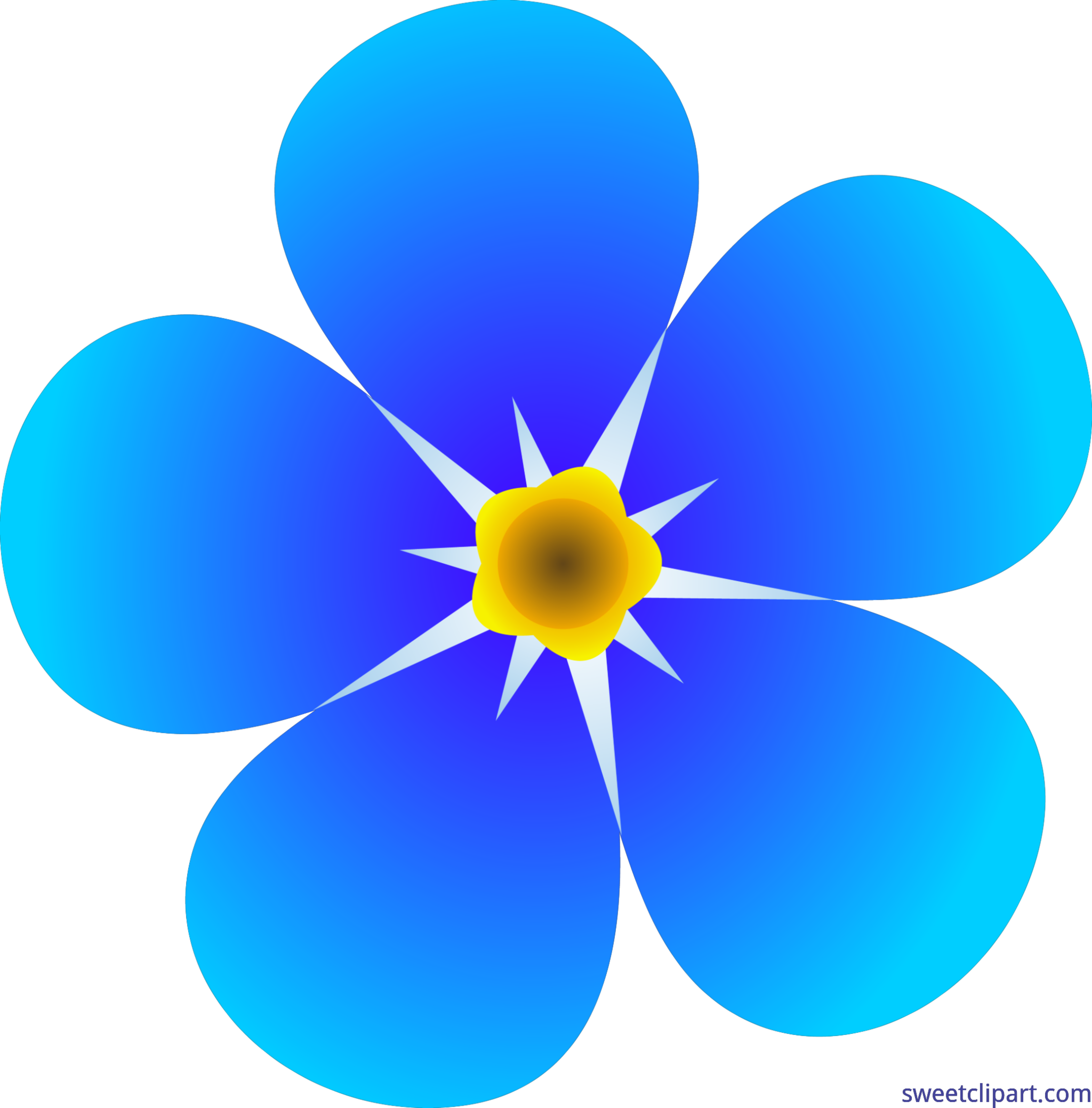 5874x5959 Single Forget Me Not Flower Clip Art