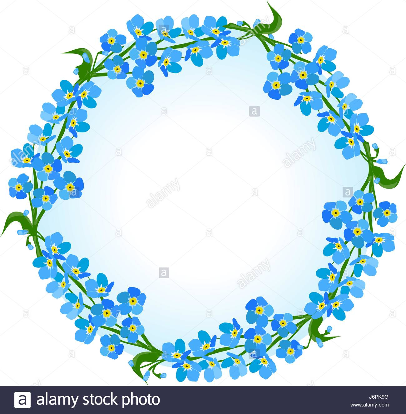 1300x1325 Vector Illustration Of A Forget Me Not Floral Frame Stock Vector