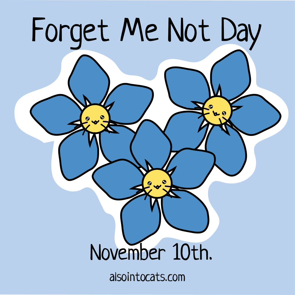 1024x1024 Cat Calendar November 10th Forget Me Not Day Also Into Cats