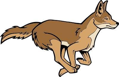 400x262 Top 73 Coyote Clip Art