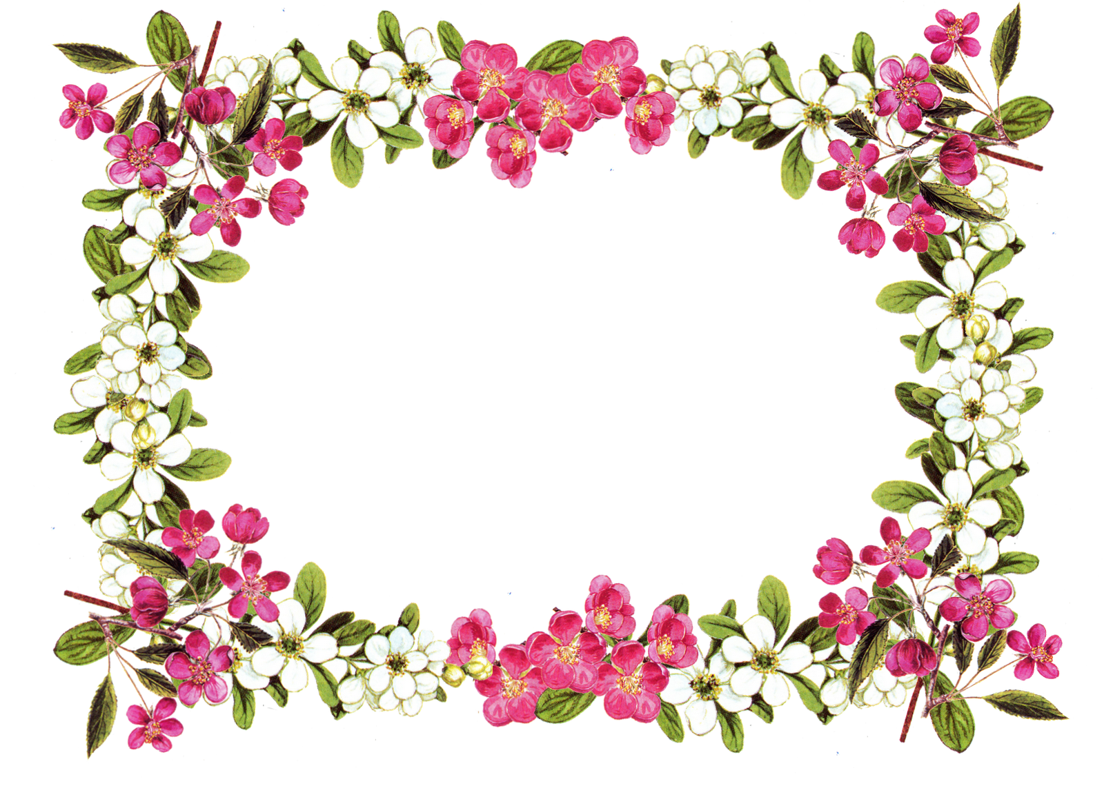 1600x1143 Free Printable Clip Art Borders Free Digital Flower Frame Png