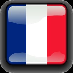 300x300 France Button Clip Art