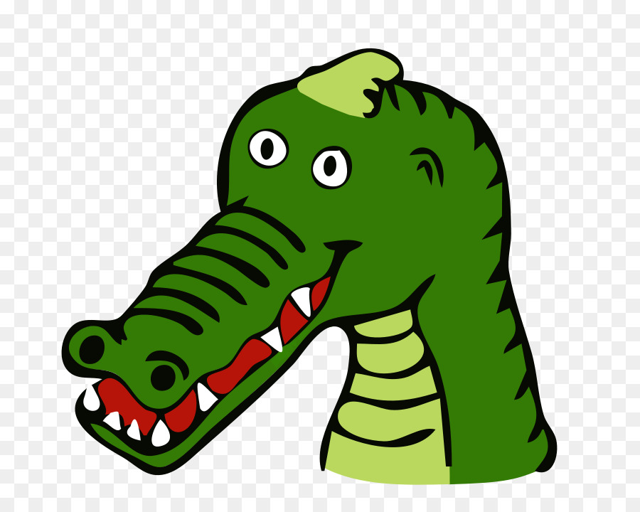900x720 Crocodile Alligator prenasalis Reptile Cartoon Clip art