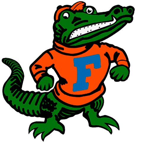 501x479 28+ Collection of Florida Gator Clipart Free High quality, free