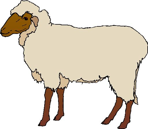 512x445 Colored Sheep Clipart Amp Colored Sheep Clip Art Images