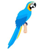 207x210 Free Bird Clipart