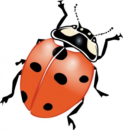 402x425 Insect Clipart Clipart Panda