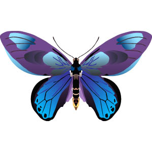 300x300 Free Butterfly Clip Art Free Collection Download And Share Free