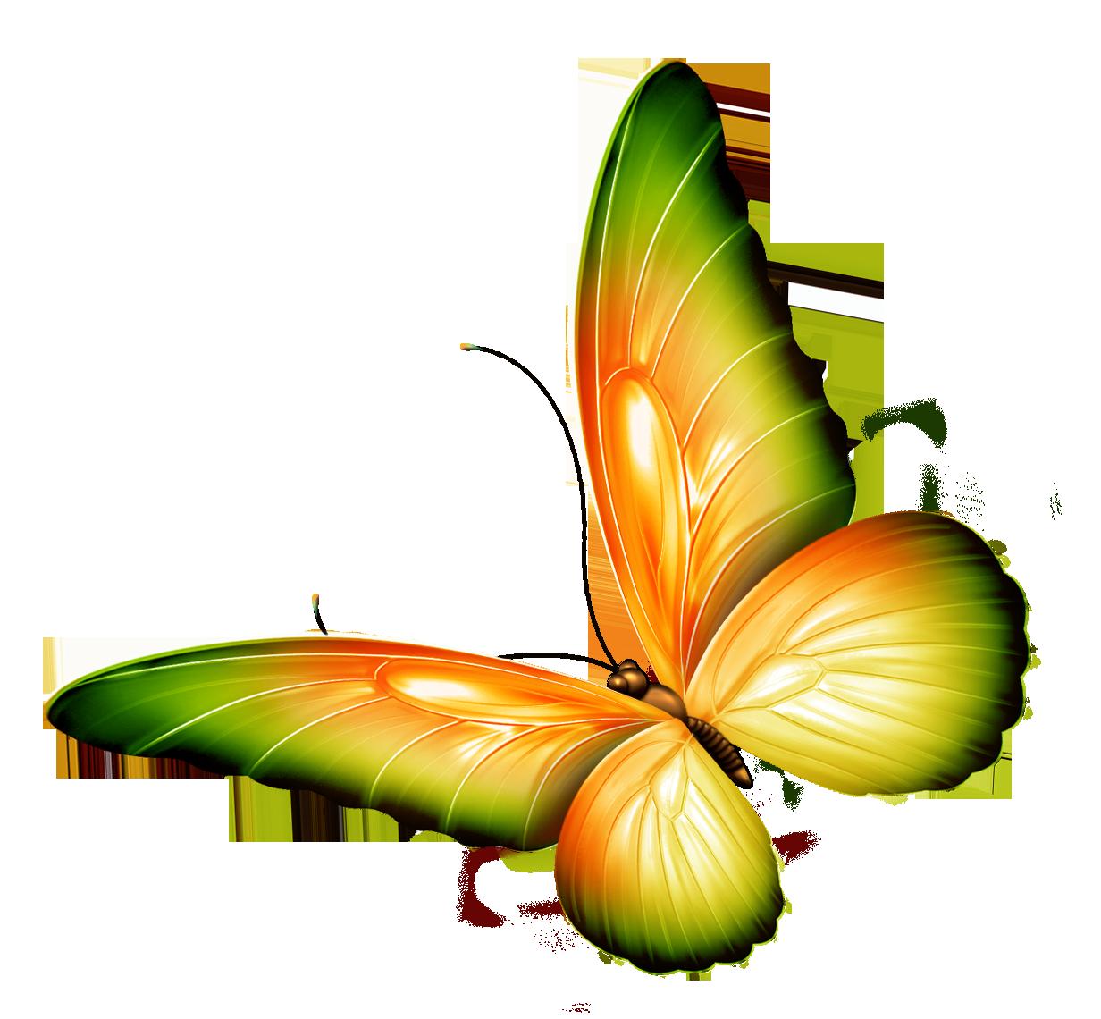 1232x1140 Png Hd Of Butterflies And Flowers Transparent Hd Of Butterflies