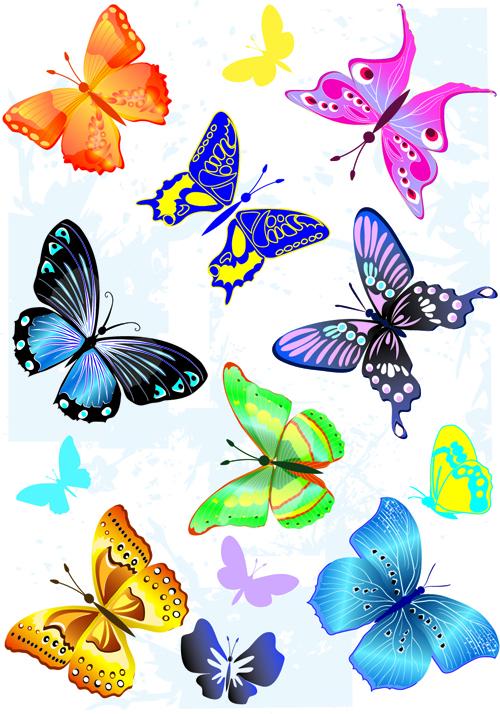 500x714 Sorts Of Butterflies Clip Art Vector Material 04